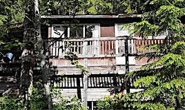 1063 Blueberry Road, Seymour Arm, BC, V0E 2V2