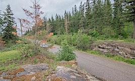 195 Twin Lakes Road, Enderby, BC, V0E 1V3