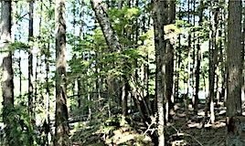 SL 31-6300 Armstrong Road, Eagle Bay, BC, V0E 1T0