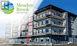 206,-499 Meadow Lake Court East, Brooks, AB, T1R 0Y7