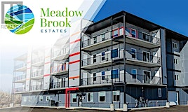 307,-499 Meadow Lake Court East, Brooks, AB, T1R 0Y7