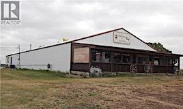 401 Pioneer Trail Road, Hanna, AB, T0J 1P0