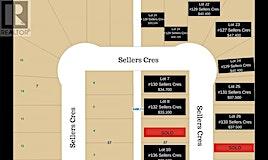 129 Sellers Crescent, Davidson, SK, S0G 1A0