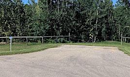#60 26555 Twp 481, Rural Leduc County, AB, T0C 0V0