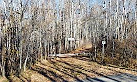 15 54023 Rge Rd 280, Rural Parkland County, AB, T7X 3V4