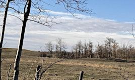 Range Rd 223 Wye Road, Rural Strathcona County, AB, T8A 6N1