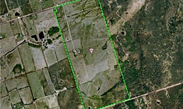 7433 Old Homestead Road, Georgina, ON, L0E 1N0