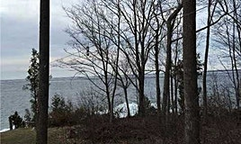 1619 Chief Joseph Snake Road, Georgina Islands, ON, L0E 1R0