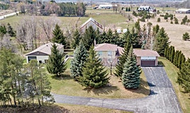 3472 County Rd 50, Adjala-Tosorontio, ON, L0G 1L0