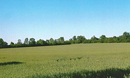 0 Lakeridge Road, Uxbridge, ON, L0C 1H0