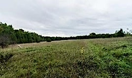 0 Con Rd 4 S Pt Lot 12 Road, Brock, ON, L0K 1A0