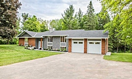 6385 County Rd 13 Road, Adjala-Tosorontio, ON, L0M 1J0