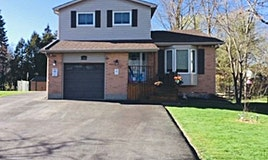 5368 Black River Road, Georgina, ON, L0E 1R0