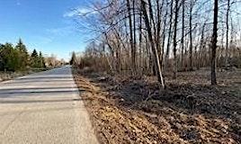 126-127 Riverview Beach Road, Georgina, ON, L0E 1N0