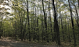 Lot D E 20 Concession Road, Cayuga, ON, L9M 0B1