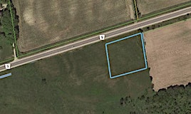 6671 County Rd 9 Road, Clearview, ON, L0M 1N0