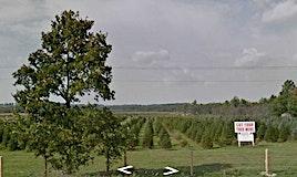635548 Highway 10, Mono, ON, L9V 5P6