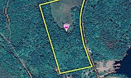 1037 Skeleton Lake 3... Road, Muskoka Lakes, ON, P0B 1M0