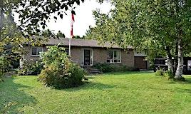 1450 Durham Road 50 Road, Brock, ON, L0K 1A0
