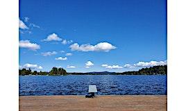 0 Moose Island, Shawnigan Lake, BC, V0R 2W5