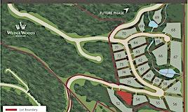 9224 Wedgemount Place, Whistler, BC, V8E 1M1