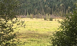 2530 Blackwater Road, Pemberton, BC, V0N 2L0